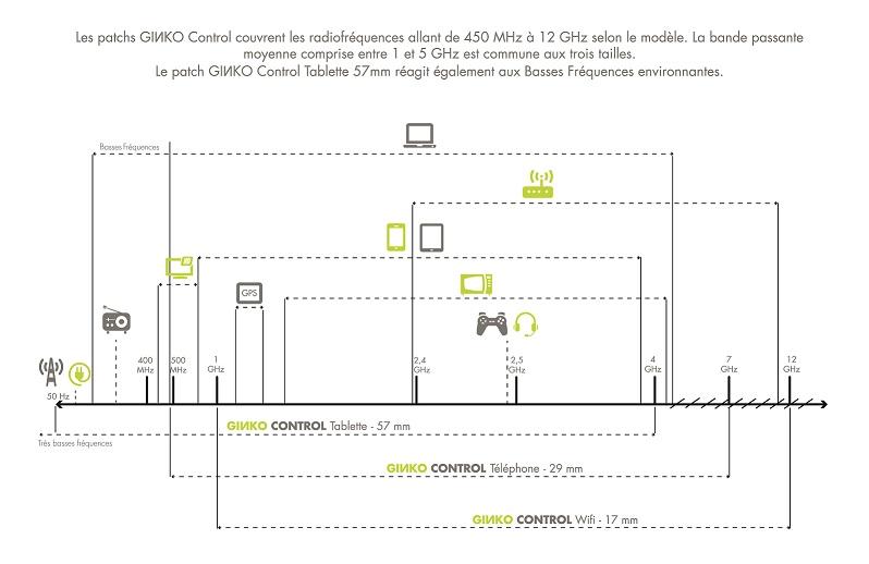 ginko infographie2
